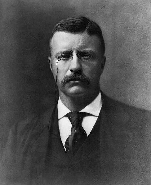 an analysis of the social impact of theodore roosevelt In the post-gilded age, america needed a strong president to carry out and embellish upon the social reform and dismantle the corruption left by trusts taking over for the late president.