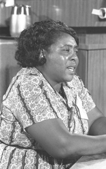 Image for: Fannie Lou Hamer: Testimony at the Democratic National Convention