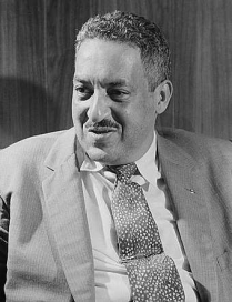Image for: Thurgood Marshall: Dissent in Florida v. Bostick
